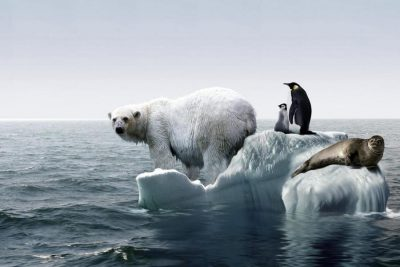 global-warming-occur_f66875f8a4ac275e