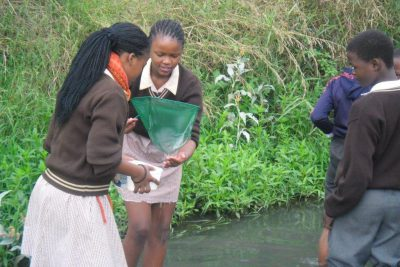 fezokuhle_primary_water_study