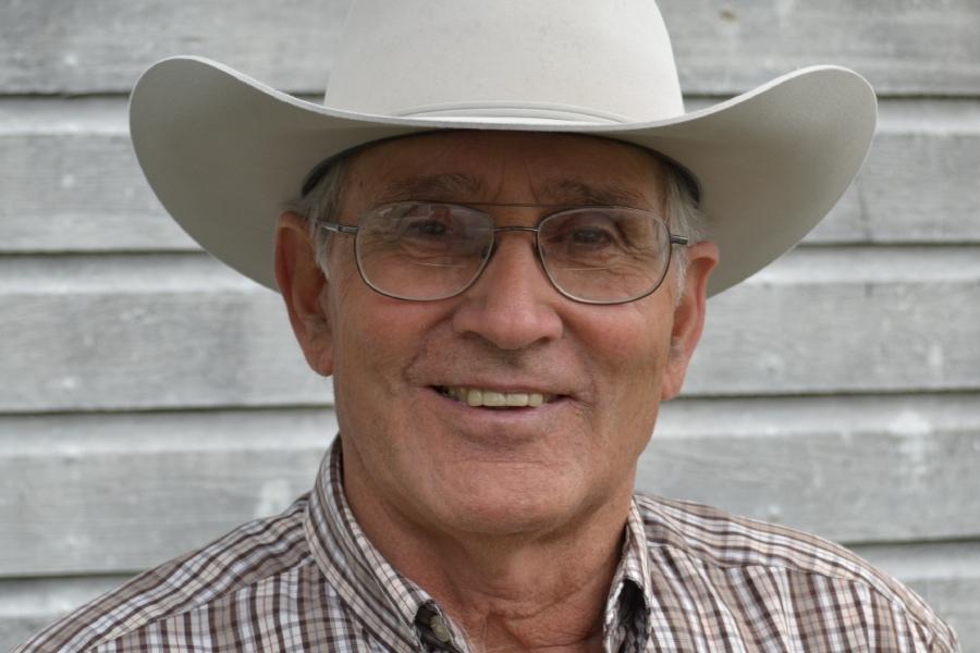 Change ways for profitable cattle farming