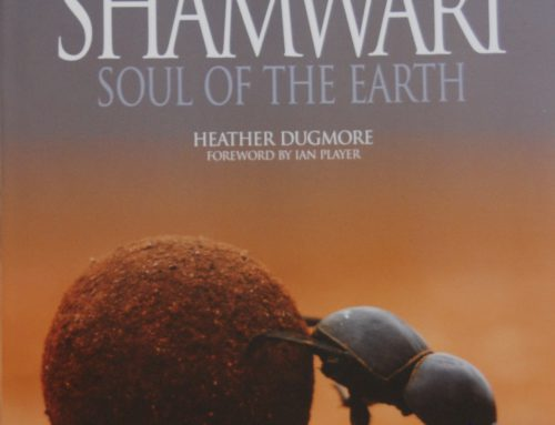 SHAMWARI Soul of The Earth