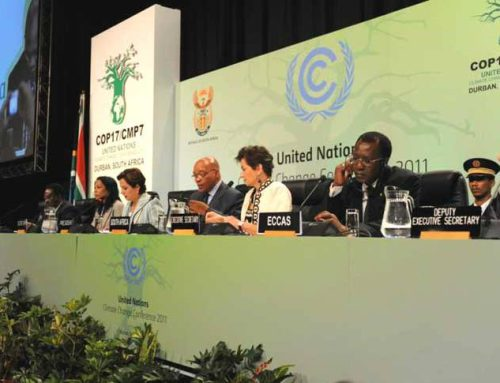 COP17 & the Role of SA Business