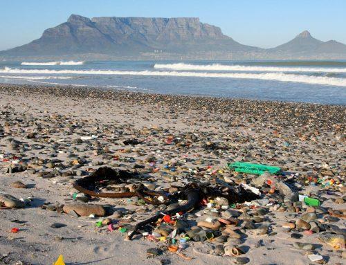 Titanic task of tackling marine plastic pollution